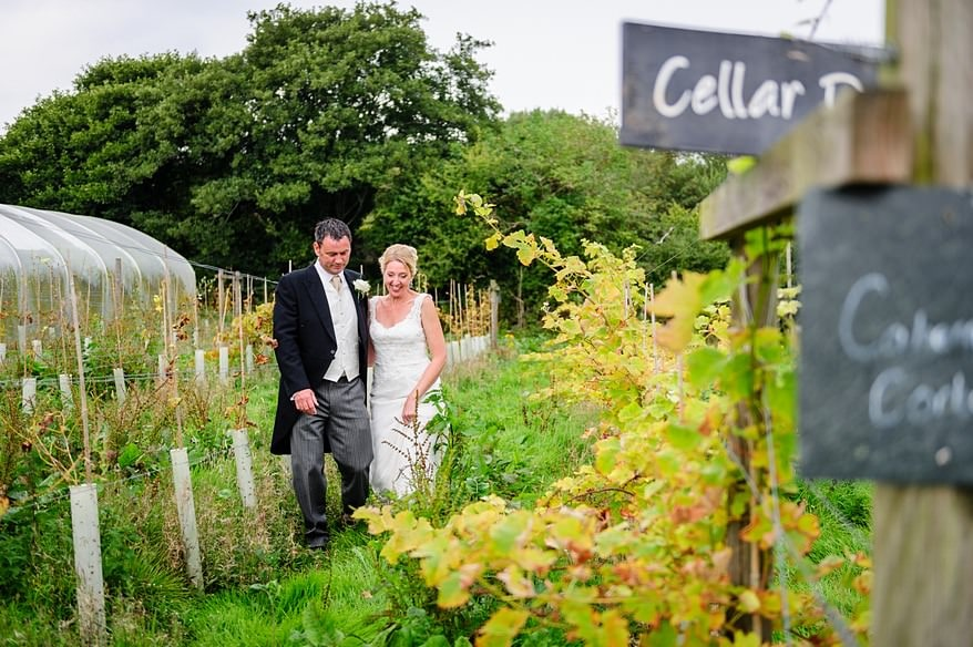 Knightor winery wedding 1 St Austell wedding venue
