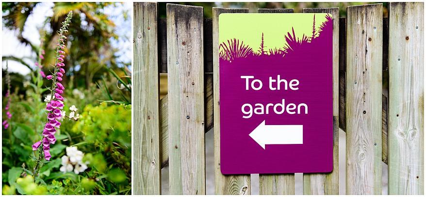 Trebah gardens wedding proposal