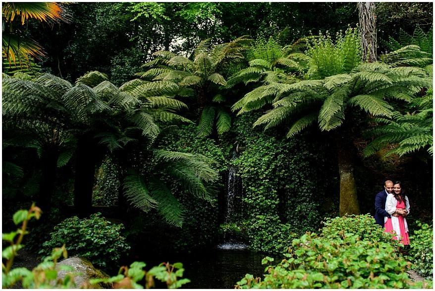 koi pool at Trebah Gardens