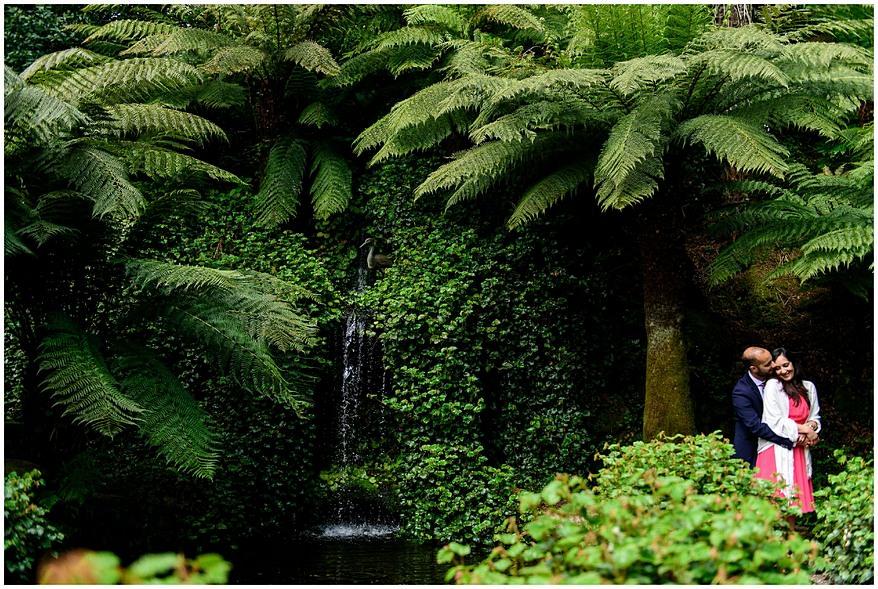 waterfall at the koi pool at trebah gardens