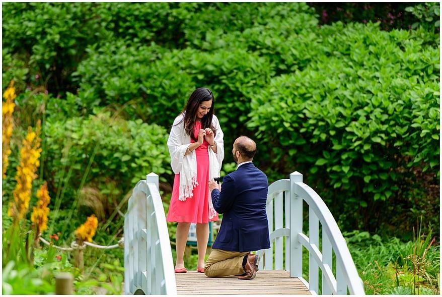 wedding proposal in Cornwall