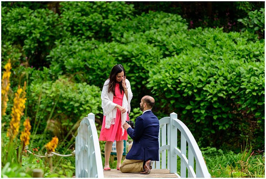 wedding proposal at Trebah Gardens