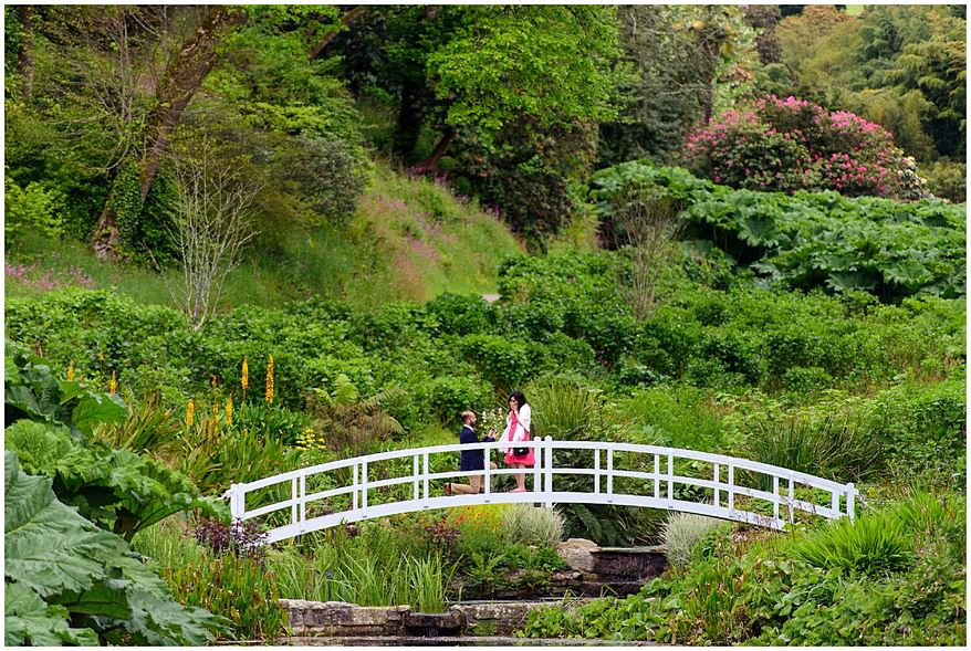 Trebah gardens wedding proposal on the iconic Bridge