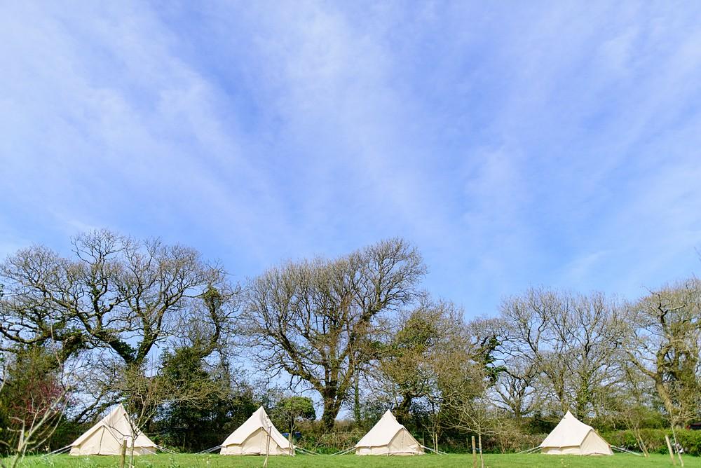 Camping at Nancarrow Farm in Cornwall 3