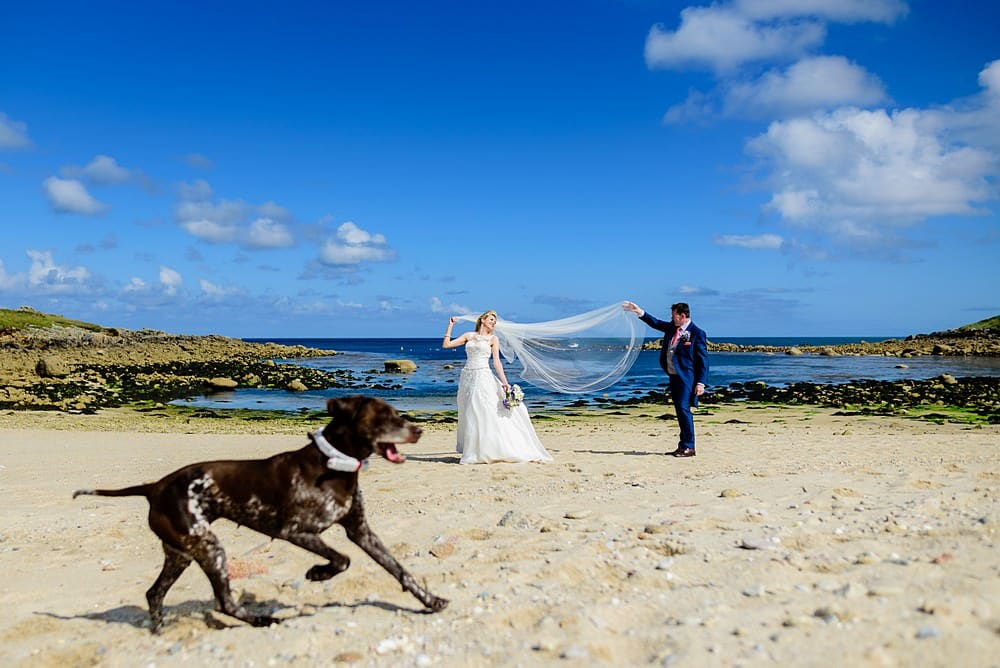 photo bombed by a dog on the Isles of scillies