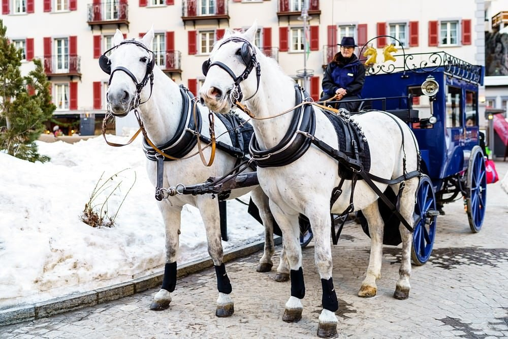 Grand zermatterhof hotel wedding horse and carriage