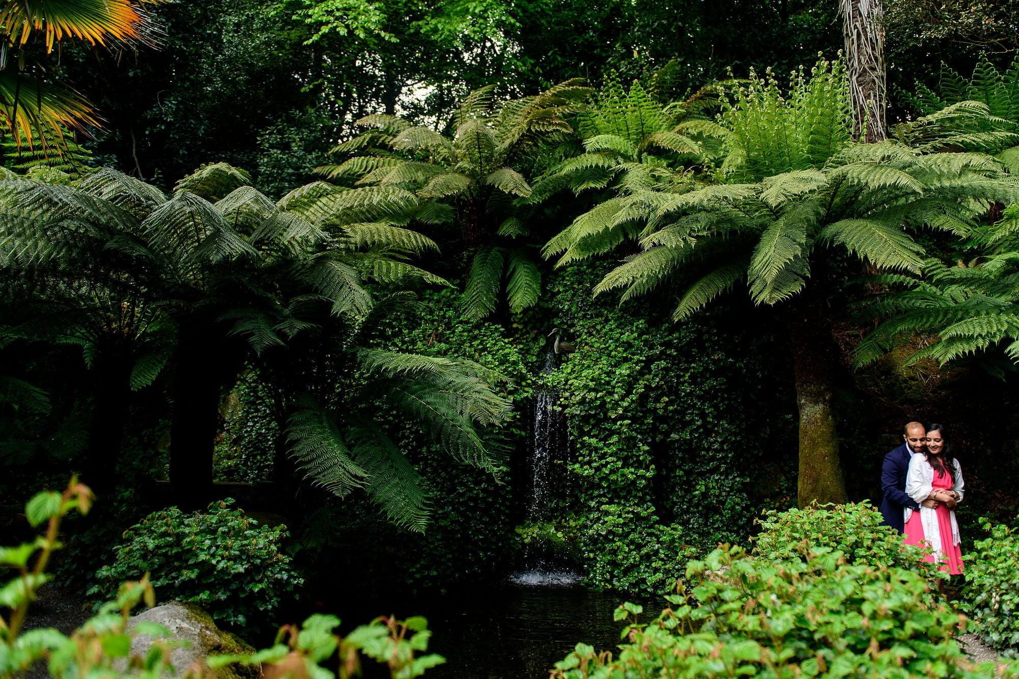 Trebah gardens wedding proposal 20
